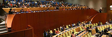 Mobilizing Cultural and Religious Ethics to Promote the U.N. Post 2015 Development Goals
